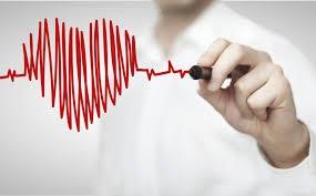 Сколько ударов сердца в минуту нормально