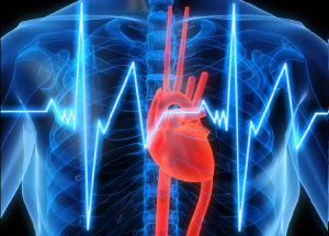 Нарушение сердечного ритма у здоровых людей